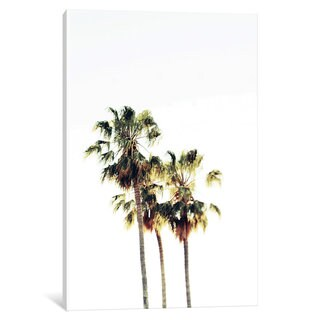 iCanvas The Palms Blanc by Chelsea Victoria Canvas Print