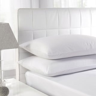 White Feather Cotton Standard Pillow (Set of 2)