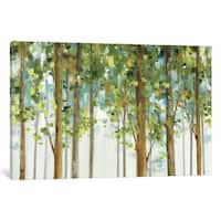 iCanvas Forest Study I Crop by Lisa Audit Canvas Print