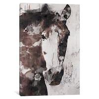 iCanvas Gorgeous Horse IV by Irena Orlov Canvas Print