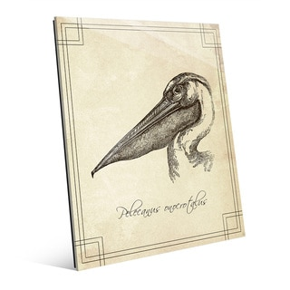 Pelecanus Onocrotalus' Glass Ready-to-hang Vertical Wall Art
