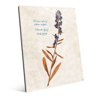 Dry Blueweed' Abstract Glass Wall Art