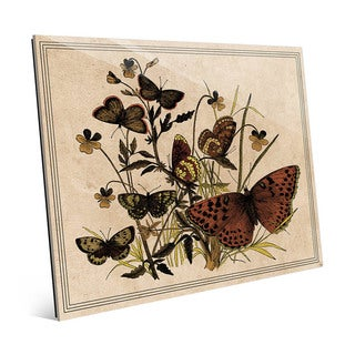 Butterfly and Clovers' Glass Wall Art
