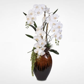 Real Touch Phalaenopsis Silk Orchids with Succulents in a Tall Brown Vase