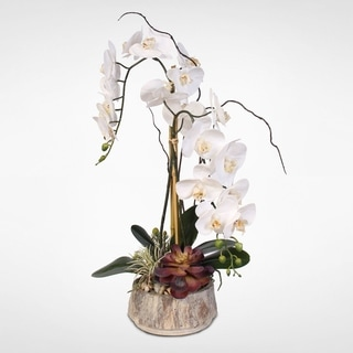 Real Touch Phalaenopsis Silk Orchids with Succulents in a Stone Vase