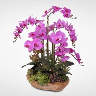 Real Touch 7-stems Phalaenopsis Silk Orchids With Succulents in Natural Wood Bowl