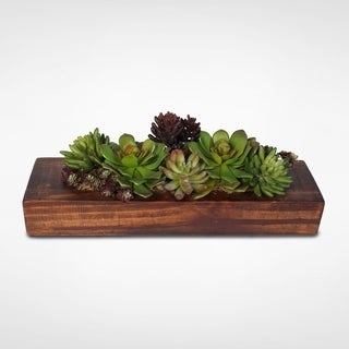 Artificial Curly Echeveria and Sedum Succulent Garden, Rocks, and Wood Planter Set