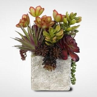 Succulent, Jade Plant and Rosette Succulent Coastal Cottage Arrangement in Stone Pot
