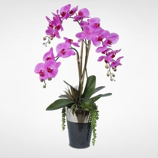 Real Touch Silk Lavender Phalaenopsis Orchid With Succulents in a Chrome-top Ceramic Pot