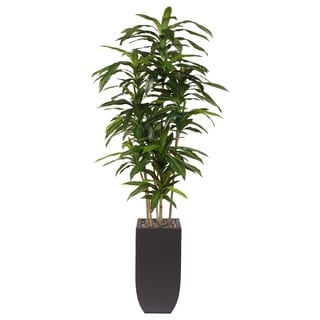 Artificial Dracaena Massangeana Metal Potted Plant