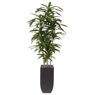 Artificial Dracaena Massangeana Dark Brown Metal Potted Plant