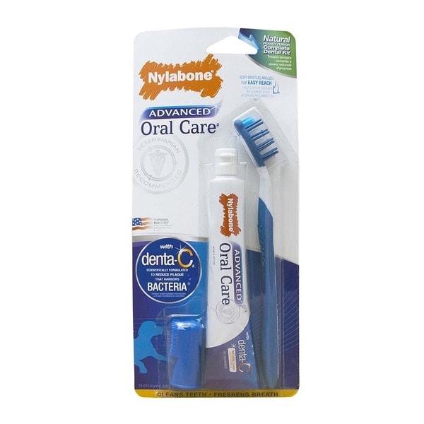 Nylabone Advanced Oral Care Natural Dog Dental Kit with 2.5oz Toothpaste
