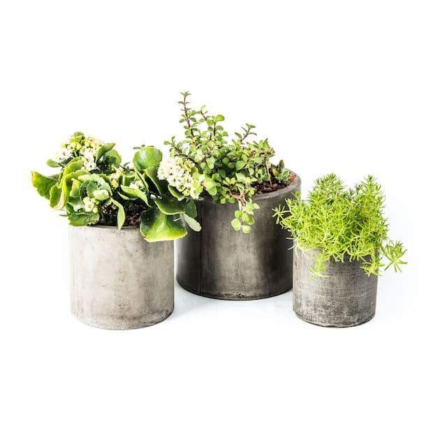 Eco-Concrete Portola Planter
