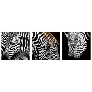 Cortesi Home 'Zebra Stripes' 12-inch Tempered Glass Wall Art (Set of 3)