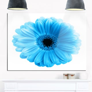 Isolated Blue Flower - Floral Art Glossy Metal Wall Art