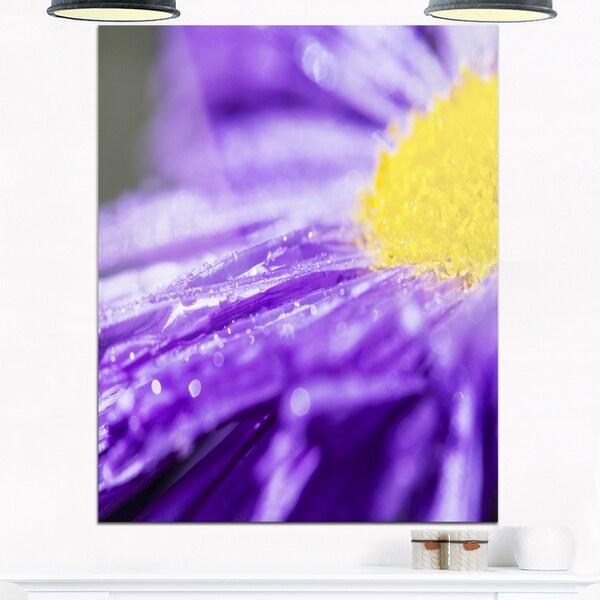 Large Violet Flower Petal Close-up - Large Flower Glossy Metal Wall Art