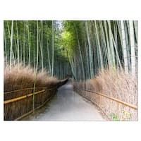 Straight Path in Bamboo Forest - Forest Glossy Metal Wall Art