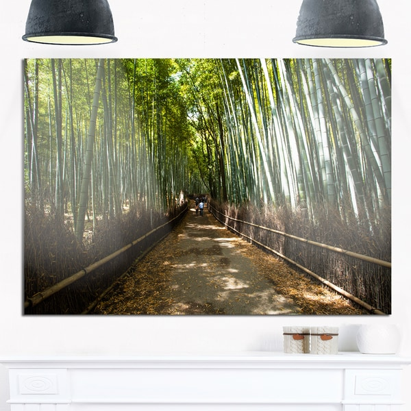 Wide Pathway in Bamboo Forest - Forest Glossy Metal Wall Art