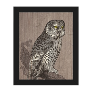 Owl Illustration' Black-frame Canvas Wall Art