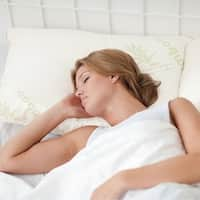 Chopped Memory Foam Pillow with Rayon from Bamboo Cover