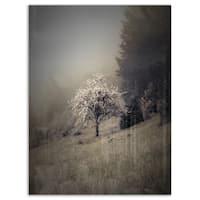 Apple Tree Vintage Style - Landscape Photo Glossy Metal Wall Art