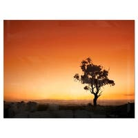 Sunrise with Lonely Tree - Extra Large Glossy Metal Wall Art Landscape