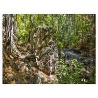 Huge Rock in Black River Shore - Landscape Glossy Metal Wall Art