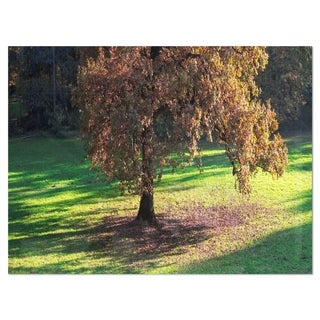 Lonely Beautiful Autumn Tree - Landscape Glossy Metal Wall Art