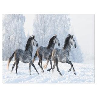 Herd of Horses Run Across Snow - Landscape Glossy Metal Wall Art
