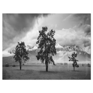 Three Trees in Front of Mountains - Landscape Glossy Metal Wall Art