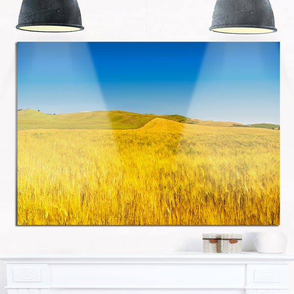 Tuscany Whet Field on Sunny Day - Landscape Glossy Metal Wall Art ...