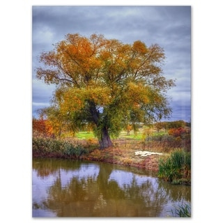 Willow Near Pond - Landscape Photography Glossy Metal Wall Art