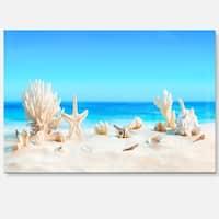 Seashells on Tropical Beach - Seashore Photo Glossy Metal Wall Art