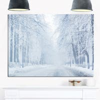 White Road and Winter Trees - Landscape Photo Glossy Metal Wall Art