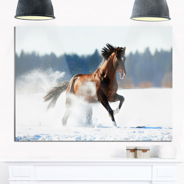 Horse Running in Winter - Landscape Photo Glossy Metal Wall Art