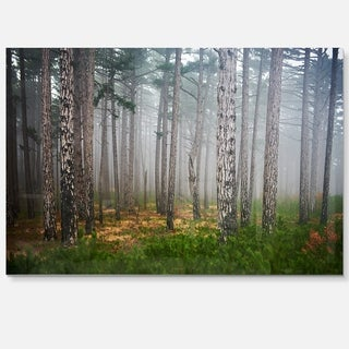 Dense Misty Forest - Landscape Photography Glossy Metal Wall Art