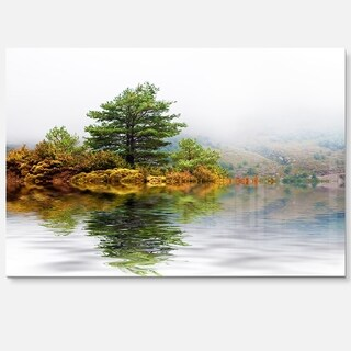Pine Tree with Reflection - Landscape Photo Glossy Metal Wall Art