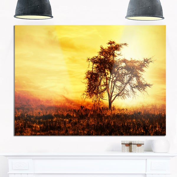 African Tree Silhouette - Landscape Photo Glossy Metal Wall Art