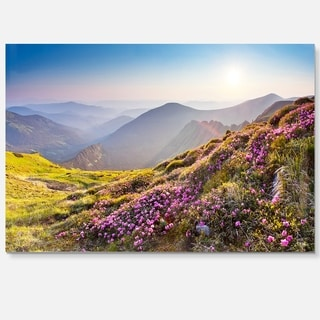 Magic Pink Flowers on Mountains - Landscape Photo Glossy Metal Wall Art
