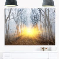 Yellow Sun Rays in Misty Forest - Landscape Photo Glossy Metal Wall Art