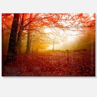 Yellow Sun Rays in Red Forest - Landscape Photo Glossy Metal Wall Art