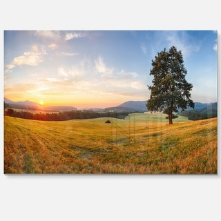 Lonely Tree on Meadow at Sunset - Landscape Photo Glossy Metal Wall Art