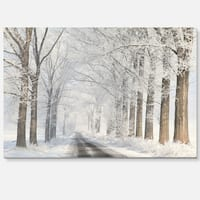 Road Through Frosted Forest - Landscape Photo Glossy Metal Wall Art