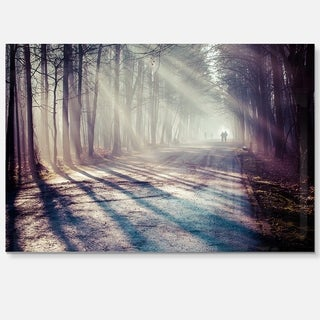 Strong Sunbeams in Thick Forest - Landscape Photo Glossy Metal Wall Art