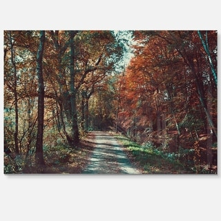 Road Through Red Fall Forest - Landscape Photo Glossy Metal Wall Art