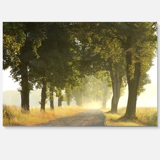 Country Road Below Green Trees - Landscape Photo Glossy Metal Wall Art