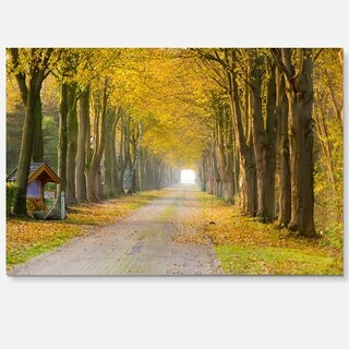 Country Road Below Yellow Trees - Landscape Photo Glossy Metal Wall Art