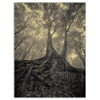 Tree with Big Roots on Halloween - Landscape Photo Glossy Metal Wall Art