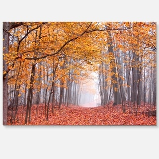 Beautiful Trees with Fallen Leaves - Landscape Photo Glossy Metal Wall Art