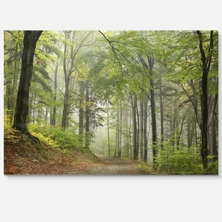 Green Beach Forest Pathway - Landscape Photo Glossy Metal Wall Art